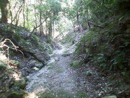 瓜生山への道