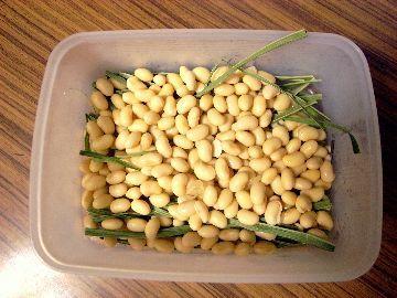 豆を敷き詰める