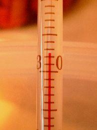 32.5℃