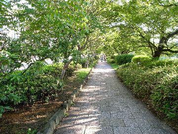 川端団栗の歩道