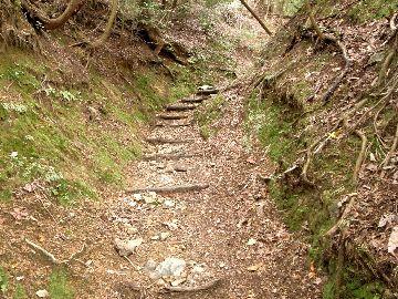 鞍馬を過ぎた山道