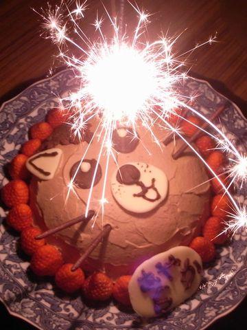 ハムスターのバースデーケーキ