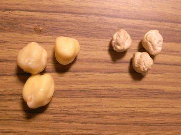 水を吸った豆