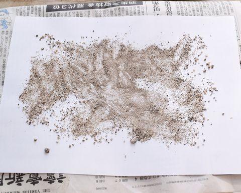 砂を広げて褐簾石を探す