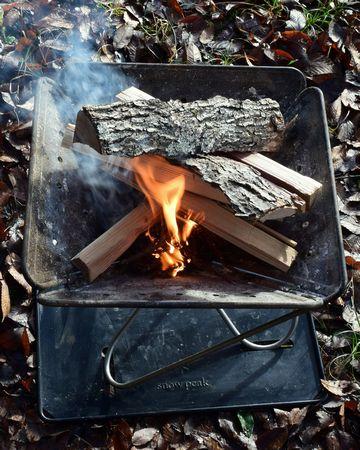 杉の葉が燃え広がる