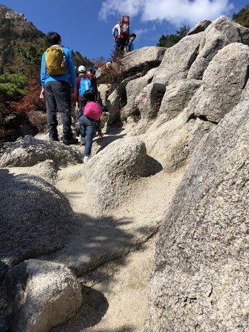 御座所岳岩ばかりの登山道