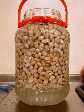 豆麹を投入