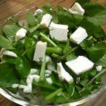 自家製チーズとクレソンのサラダ (チーズ作りその4)