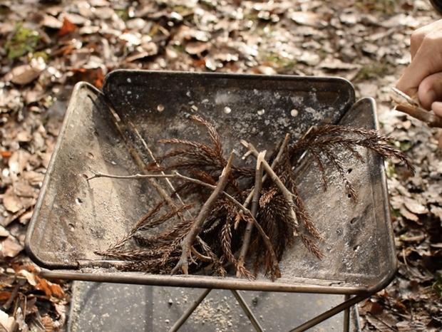 焚き火台に杉の葉と細い枝を入れる