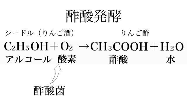 酢酸発酵の図