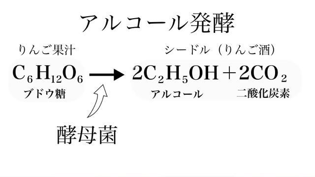 アルコール発酵の図