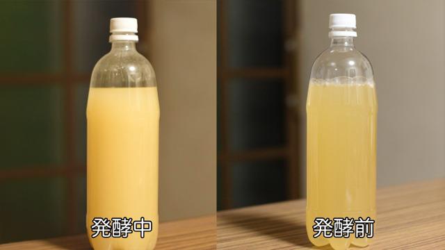 リンゴジュースがアルコール発酵アルコール発酵するところ