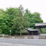 京都御苑の石垣から褐簾石(カツレンセキ)を探す