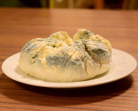 青カビが順調に育ってきたチーズ