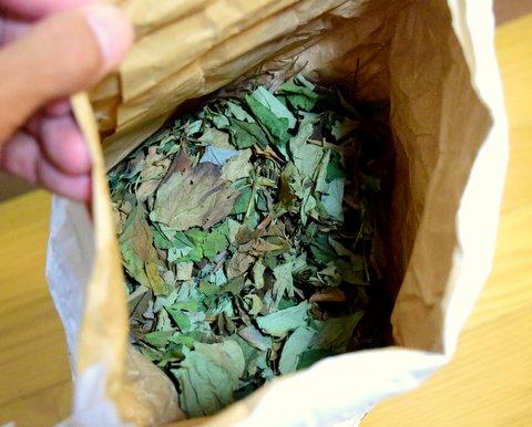 袋の中のドクダミ茶