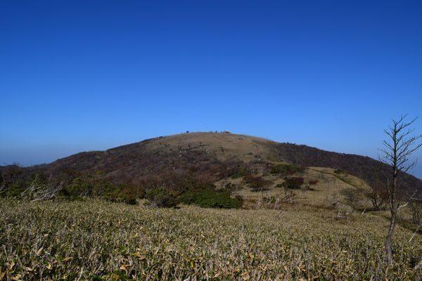 蓬莱山頂を目指す