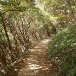 六甲山へ行く